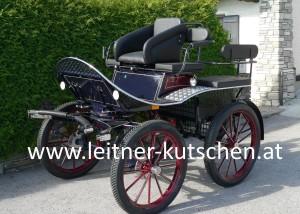 leitner-kutschen-training-50C-1